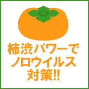 柿渋パワーでノロウイルス対策!